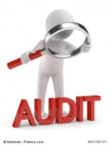 Software Audit